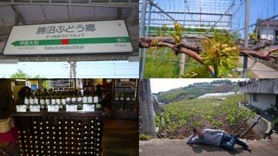 JR勝沼ぶどう郷駅と周辺