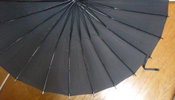 Ray 24本傘