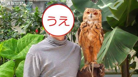 掛川花鳥園 フクロウと記念撮影