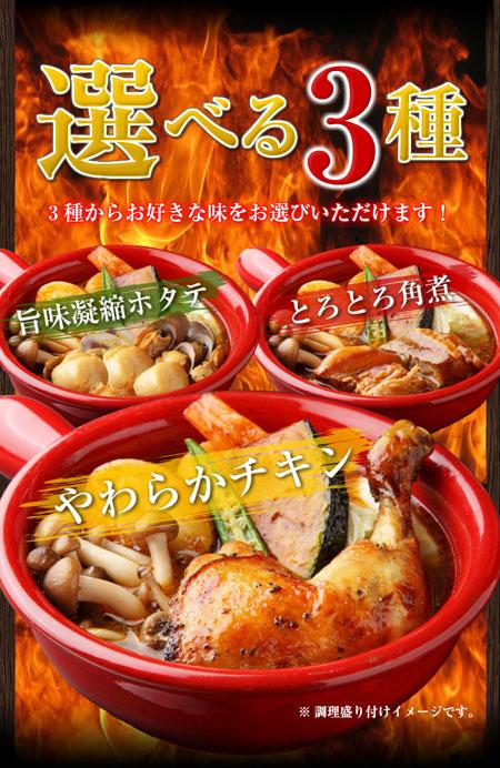 北海道産直グルメ ぼーの 北海道極旨スパイシー スープカレー
