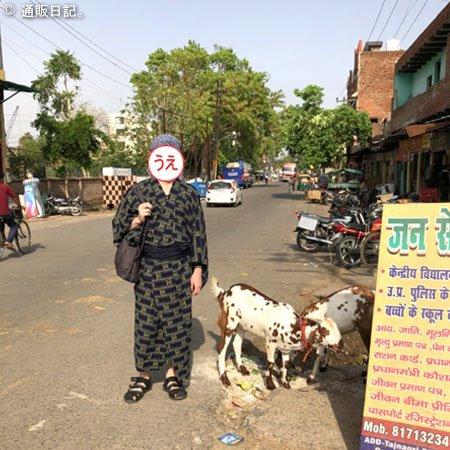 インドで山羊と