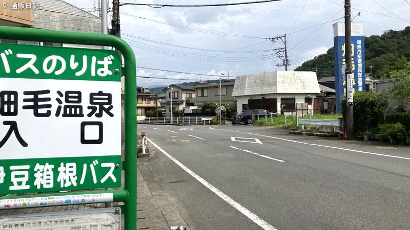 夏はぬる湯しか勝たん!伊豆畑毛温泉 誠山 デジタルテドックスにも最適な温泉旅館。
